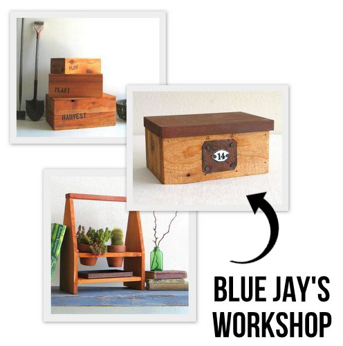 BlueJaysWorkshop